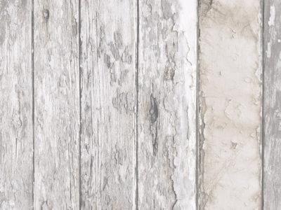 papel-de-parede-bucalo-colecao-exposure-ep3608
